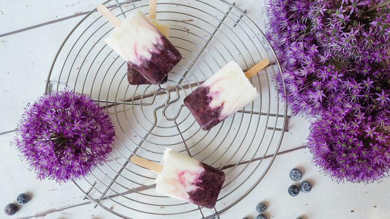 CF CosyFoxes Blaubeer Eis Heidelbeeren selber machen