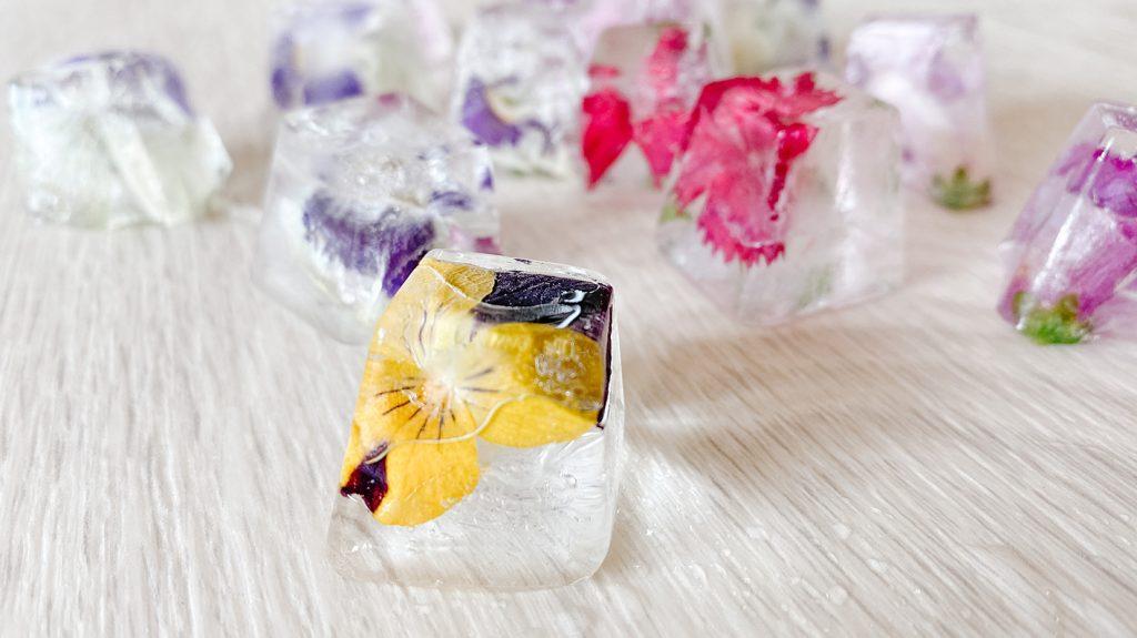 CF CosyFoxes Flower Ice Cubes Blüten Eiswürfel
