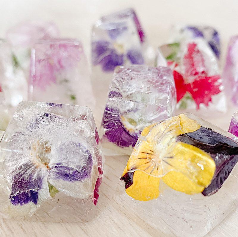 Flower Ice Cubes – Eiswürfel mit essbaren Blüten