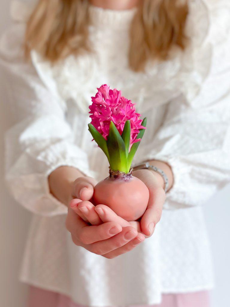 CF CosyFoxes gewachste Hyazinthen Zwiebeln Ostern Frühling DIY