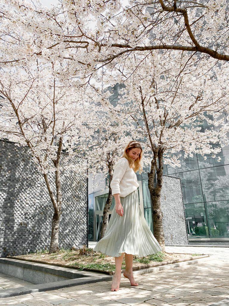 CF CosyFoxes Kirschblüten Cherry Blossoms Seoul Forest Südkorea South Korea